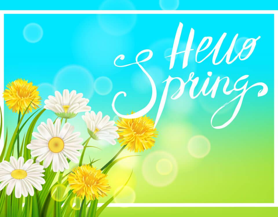 Springtime HVAC Clean and Check